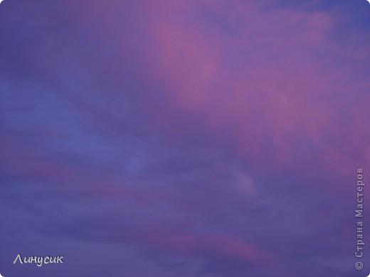 Небо, облака и ласточки фото 2