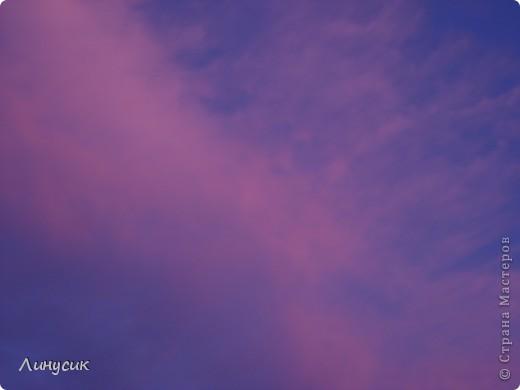 Небо, облака и ласточки фото 1