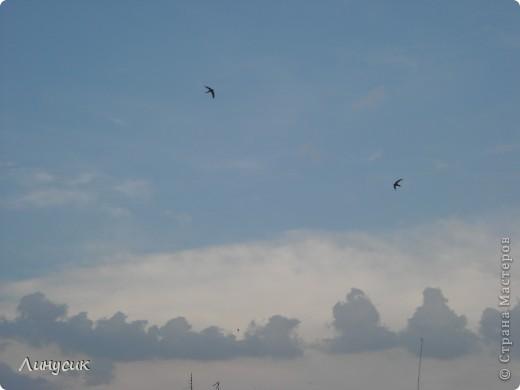 Небо, облака и ласточки фото 27