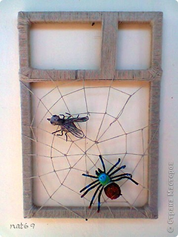 новая паутина