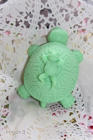 Мыло сварила из основы , добавила хлопковое масло  и аромат цветущей сакуры -)))  фото 14