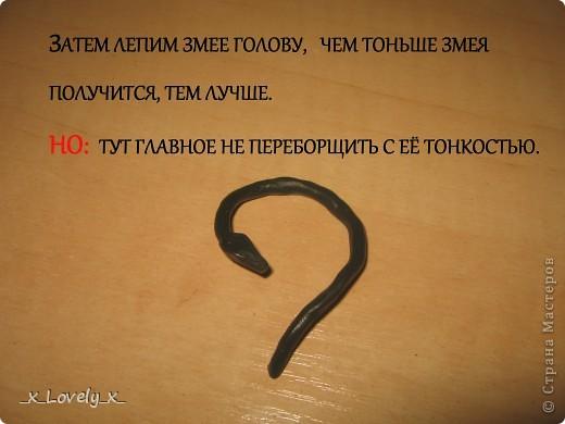 Змейка фото 7