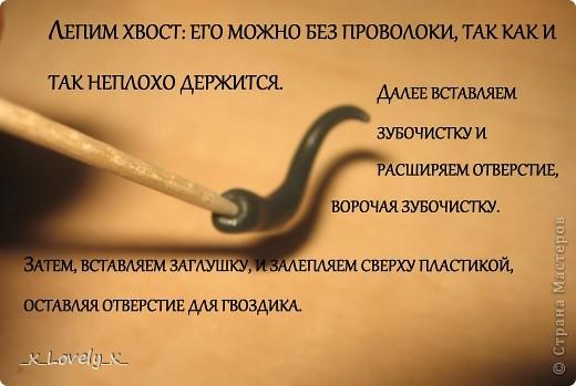 Змейка фото 10