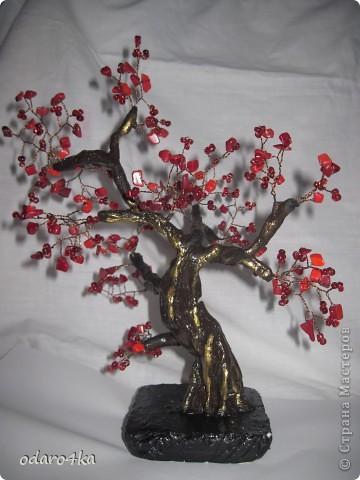 одно из первых деревье.натуральный камень коралл и + ещё бисер красный.Гипс проволока фото 1