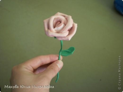 Когда я первый раз случайно заглянула на этот сайт я была порожена какую красоту могут творить руки настоящих мастеров,меня очень привлекла лепка.Я решила сначало попробовать просто слепить что нибудь из массы для детского творчества,и вот что у меня получилось)) Этот цветок я лепила специально для свекрови. фото 2