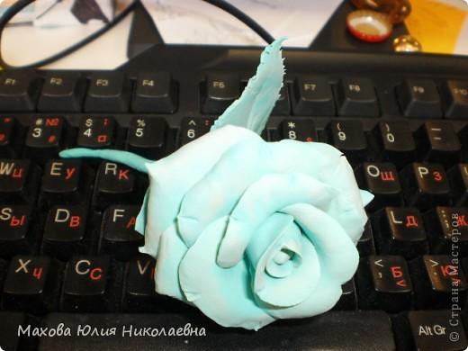 Когда я первый раз случайно заглянула на этот сайт я была порожена какую красоту могут творить руки настоящих мастеров,меня очень привлекла лепка.Я решила сначало попробовать просто слепить что нибудь из массы для детского творчества,и вот что у меня получилось)) Этот цветок я лепила специально для свекрови. фото 3