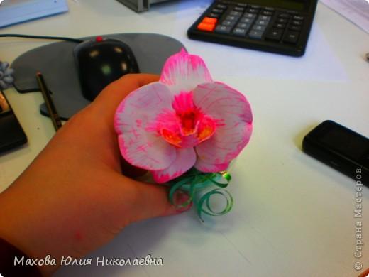 Когда я первый раз случайно заглянула на этот сайт я была порожена какую красоту могут творить руки настоящих мастеров,меня очень привлекла лепка.Я решила сначало попробовать просто слепить что нибудь из массы для детского творчества,и вот что у меня получилось)) Этот цветок я лепила специально для свекрови. фото 4