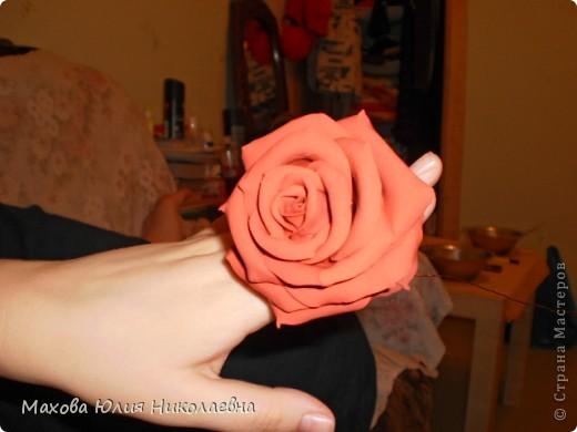 Когда я первый раз случайно заглянула на этот сайт я была порожена какую красоту могут творить руки настоящих мастеров,меня очень привлекла лепка.Я решила сначало попробовать просто слепить что нибудь из массы для детского творчества,и вот что у меня получилось)) Этот цветок я лепила специально для свекрови. фото 8