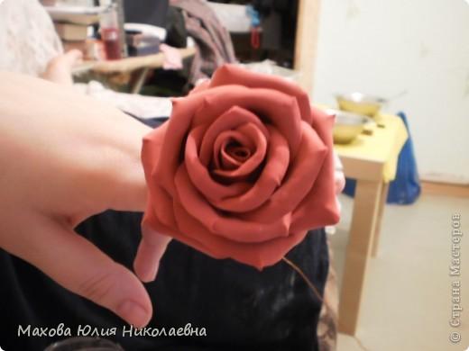 Когда я первый раз случайно заглянула на этот сайт я была порожена какую красоту могут творить руки настоящих мастеров,меня очень привлекла лепка.Я решила сначало попробовать просто слепить что нибудь из массы для детского творчества,и вот что у меня получилось)) Этот цветок я лепила специально для свекрови. фото 9