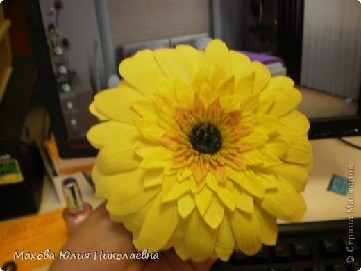 Когда я первый раз случайно заглянула на этот сайт я была порожена какую красоту могут творить руки настоящих мастеров,меня очень привлекла лепка.Я решила сначало попробовать просто слепить что нибудь из массы для детского творчества,и вот что у меня получилось)) Этот цветок я лепила специально для свекрови. фото 10