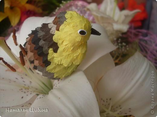 """Приветик всем!!! После того, как я выставила свою работу с птичками """"В саду!"""" http://stranamasterov.ru/node/381704, ко мне многие мастерицы обратились с просьбой сделать МК. Вот сегодня я выставляю свой МК.  фото 1"""