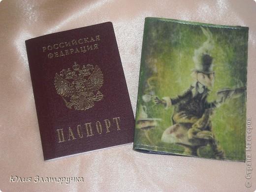одежка на паспорт фото 1