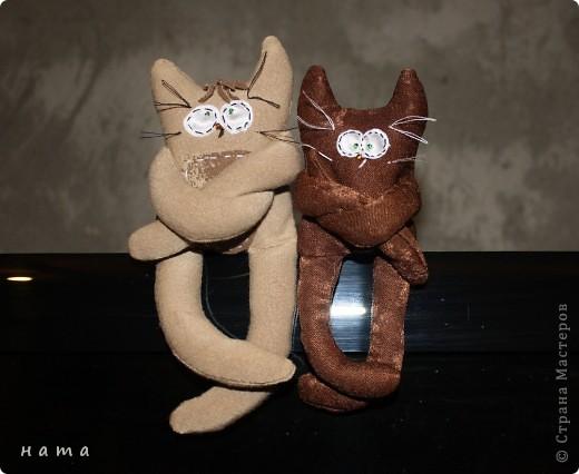 Женихов то на котовасию приехало!!!  http://stranamasterov.ru/node/381482 А девчонок нет... А природа, она ж равновесие любит - вот, встречайте, две сестрички, две подружки киска Анфиска и киска Лариска фото 1