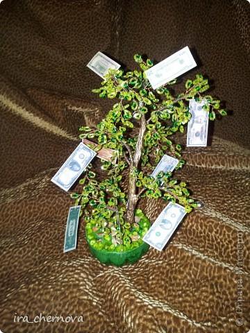 Добрый день, уважаемые мастерицы! Сделала просто так денежные деревца, захотелось что- то нежное... фото 3