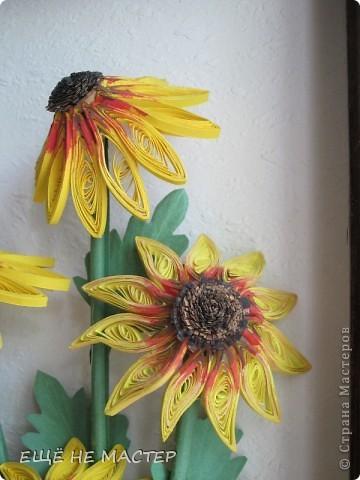 Дорогие мастерицы ! Лето в разгаре , у всех расцветают цветы.Я тоже решила высадить на нашу общую клумбу свои два кустика. Эти цветы , по-моему, называются рудбекия. фото 2