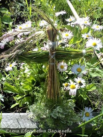 После сбора травы пусть она немного полежит, обмякнет, чтобы не порезаться. Куклы изготавливаются по технологии нитяных кукол.  фото 4