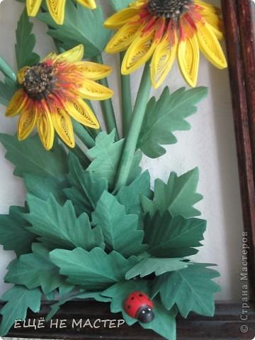 Дорогие мастерицы ! Лето в разгаре , у всех расцветают цветы.Я тоже решила высадить на нашу общую клумбу свои два кустика. Эти цветы , по-моему, называются рудбекия. фото 3