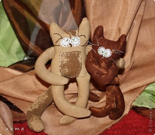 Женихов то на котовасию приехало!!!  http://stranamasterov.ru/node/381482 А девчонок нет... А природа, она ж равновесие любит - вот, встречайте, две сестрички, две подружки киска Анфиска и киска Лариска фото 9