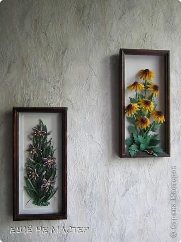 Дорогие мастерицы ! Лето в разгаре , у всех расцветают цветы.Я тоже решила высадить на нашу общую клумбу свои два кустика. Эти цветы , по-моему, называются рудбекия. фото 8