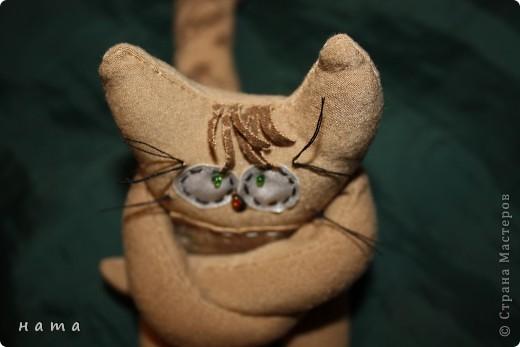 Женихов то на котовасию приехало!!!  http://stranamasterov.ru/node/381482 А девчонок нет... А природа, она ж равновесие любит - вот, встречайте, две сестрички, две подружки киска Анфиска и киска Лариска фото 7