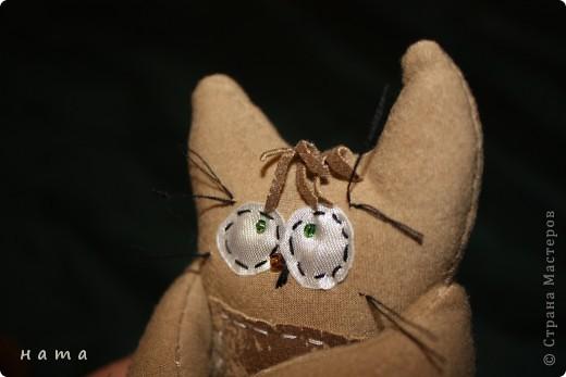 Женихов то на котовасию приехало!!!  http://stranamasterov.ru/node/381482 А девчонок нет... А природа, она ж равновесие любит - вот, встречайте, две сестрички, две подружки киска Анфиска и киска Лариска фото 6