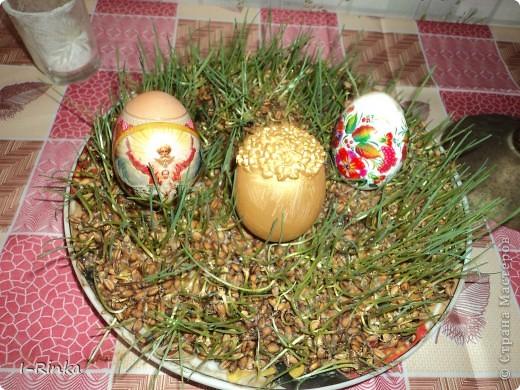Корзинку делала из бумажных трубочек, потом покрасила гуашью, внутри приклеила обрезанный лоток для яиц. А яйца выдувала, потом на клей ПВА клеила ленту, украсила чем было) Вид свехру фото 3
