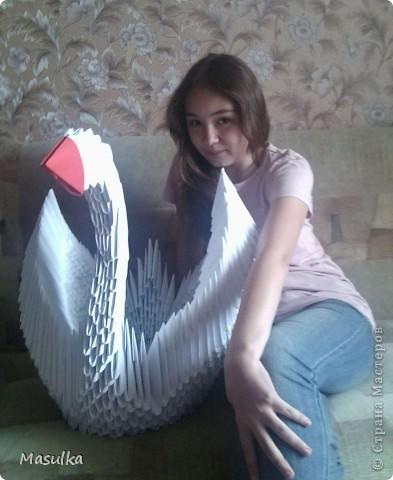 Вот мой маленький лебедёнок)))Собрала всего за 4 дня)))