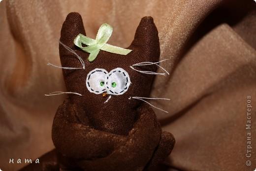 Женихов то на котовасию приехало!!!  http://stranamasterov.ru/node/381482 А девчонок нет... А природа, она ж равновесие любит - вот, встречайте, две сестрички, две подружки киска Анфиска и киска Лариска фото 12