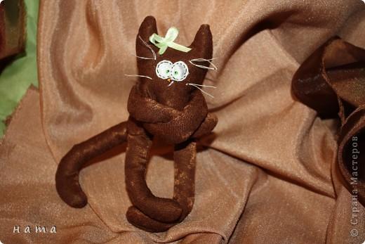 Женихов то на котовасию приехало!!!  http://stranamasterov.ru/node/381482 А девчонок нет... А природа, она ж равновесие любит - вот, встречайте, две сестрички, две подружки киска Анфиска и киска Лариска фото 13