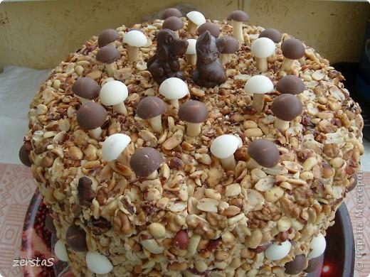 У дочки День Рождения, ну не успевали мы испечь торт. фото 6