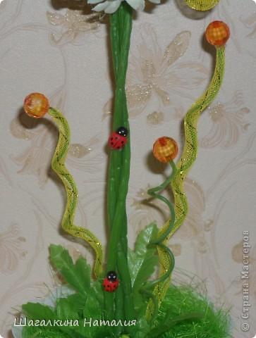 Очень люблю ромашки!!! Это моё второе ромашковое деревце, и оно мне нравится больше чем первое. фото 3
