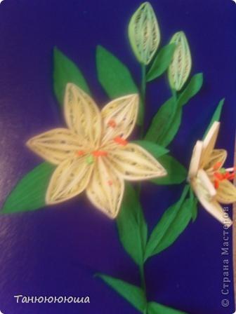 Вот такие лилия я попыталась повторить по замечательному мастер -классу Пылинки, спасибо огромное!!! Не судите строго это моя первая такая работа фото 2