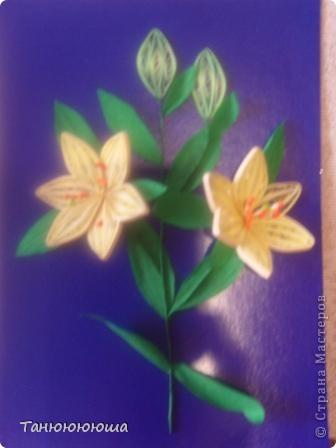 Вот такие лилия я попыталась повторить по замечательному мастер -классу Пылинки, спасибо огромное!!! Не судите строго это моя первая такая работа фото 3