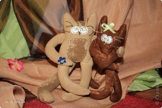 Женихов то на котовасию приехало!!!  http://stranamasterov.ru/node/381482 А девчонок нет... А природа, она ж равновесие любит - вот, встречайте, две сестрички, две подружки киска Анфиска и киска Лариска фото 14