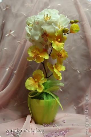 Добрый день и вечер Страна! С легкой руки Оксаночки y меня продолжается орхидеевое настроение:) Делала их в подарок воспитателям моей дочери. Вчера уже подарили. фото 1