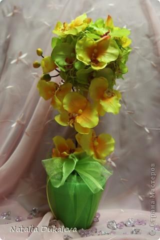 Добрый день и вечер Страна! С легкой руки Оксаночки y меня продолжается орхидеевое настроение:) Делала их в подарок воспитателям моей дочери. Вчера уже подарили. фото 2