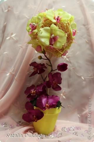 Добрый день и вечер Страна! С легкой руки Оксаночки y меня продолжается орхидеевое настроение:) Делала их в подарок воспитателям моей дочери. Вчера уже подарили. фото 4