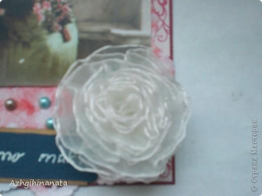 Вот оно хомячество чистой воды. Покупала ленты, продавец в магазине предложила цветок, это уже потом я рассмотрела что это такое.  фото 4