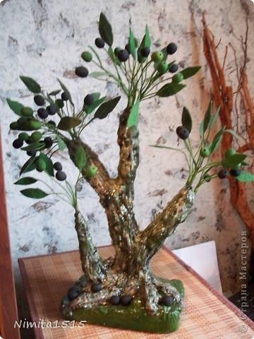 Привет жителям Страны Мастеров. Я сегодня к вам с Оливками и маслинами пришла. Пробовала сварить хф, намешала весь клей который был в доме, в результате получилась белая масса, но она не тянулась, цветочки делать не получалось, но не стала выбрасывать и наделала маслин и листиков, так и получилось деревце. фото 4