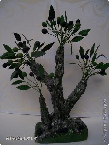 Привет жителям Страны Мастеров. Я сегодня к вам с Оливками и маслинами пришла. Пробовала сварить хф, намешала весь клей который был в доме, в результате получилась белая масса, но она не тянулась, цветочки делать не получалось, но не стала выбрасывать и наделала маслин и листиков, так и получилось деревце. фото 7