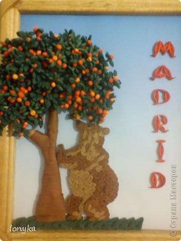 медведь и мандоровое дерево фото 3