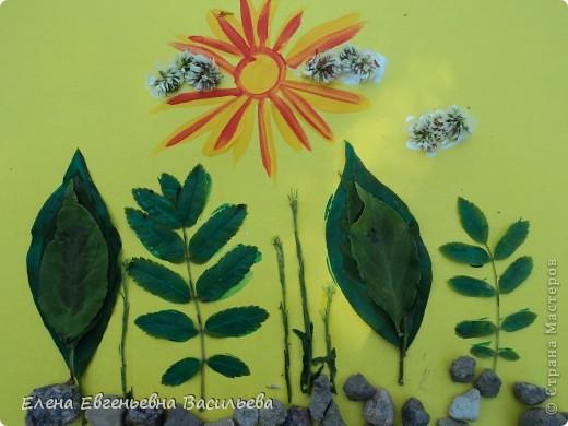 Лучшее время для природных  поделок - лето и осень. Возьмите для работы: листья и цветы, веточки и траву, соломку, камушки, семена и многое другое.  При изготовлении поделок используются и дополнительные материалы: бумага, картон, пластилин, проволока, клей, бусины, пуговицы, крупа и т.д.  А у нас с ребятами получилось вот так!!!  Котик на заборе /цветы клевера, листья, камушки/ фото 5