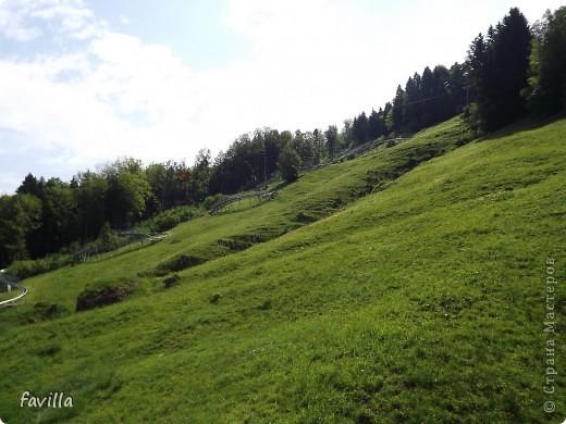Alpsee Coaster самый длинный в Германии родельбан (горка для катания на санях) Длина 3 км, подъем в гору (на высоту около 1400 м) на подвесной дороге. При спуске - 68 поворотов, 23 волны, 7 прыжков, 4 моста, и 430-градусный спиральный поворот. Скорость развивается до 40 км в час Подъем в гору происходит на подвесной дороге.  Я фотографировала  маму и Вику со своего сиденья.  фото 2