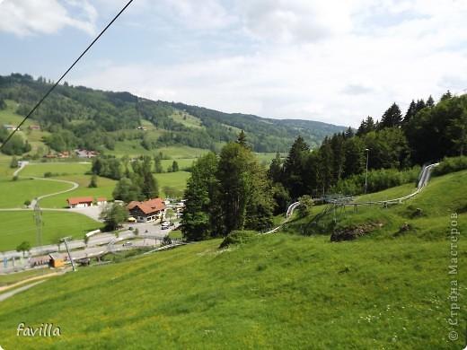 Alpsee Coaster самый длинный в Германии родельбан (горка для катания на санях) Длина 3 км, подъем в гору (на высоту около 1400 м) на подвесной дороге. При спуске - 68 поворотов, 23 волны, 7 прыжков, 4 моста, и 430-градусный спиральный поворот. Скорость развивается до 40 км в час Подъем в гору происходит на подвесной дороге.  Я фотографировала  маму и Вику со своего сиденья.  фото 3