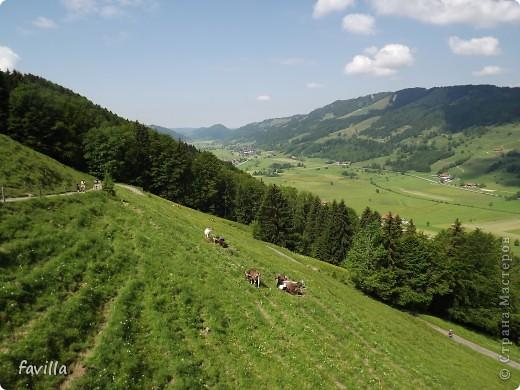 Alpsee Coaster самый длинный в Германии родельбан (горка для катания на санях) Длина 3 км, подъем в гору (на высоту около 1400 м) на подвесной дороге. При спуске - 68 поворотов, 23 волны, 7 прыжков, 4 моста, и 430-градусный спиральный поворот. Скорость развивается до 40 км в час Подъем в гору происходит на подвесной дороге.  Я фотографировала  маму и Вику со своего сиденья.  фото 6