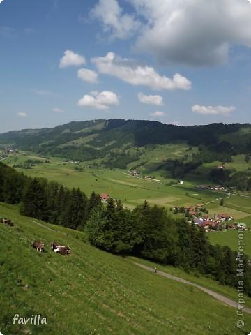 Alpsee Coaster самый длинный в Германии родельбан (горка для катания на санях) Длина 3 км, подъем в гору (на высоту около 1400 м) на подвесной дороге. При спуске - 68 поворотов, 23 волны, 7 прыжков, 4 моста, и 430-градусный спиральный поворот. Скорость развивается до 40 км в час Подъем в гору происходит на подвесной дороге.  Я фотографировала  маму и Вику со своего сиденья.  фото 7