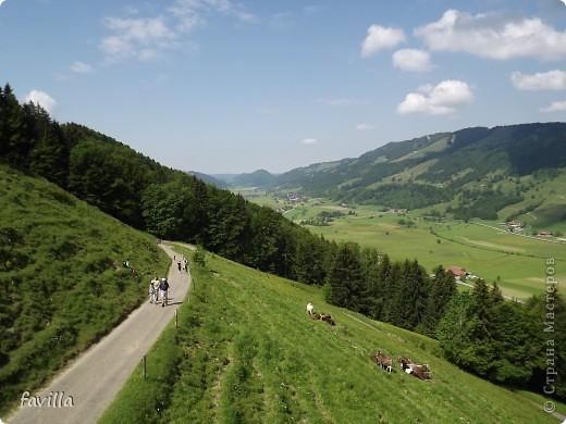 Alpsee Coaster самый длинный в Германии родельбан (горка для катания на санях) Длина 3 км, подъем в гору (на высоту около 1400 м) на подвесной дороге. При спуске - 68 поворотов, 23 волны, 7 прыжков, 4 моста, и 430-градусный спиральный поворот. Скорость развивается до 40 км в час Подъем в гору происходит на подвесной дороге.  Я фотографировала  маму и Вику со своего сиденья.  фото 8