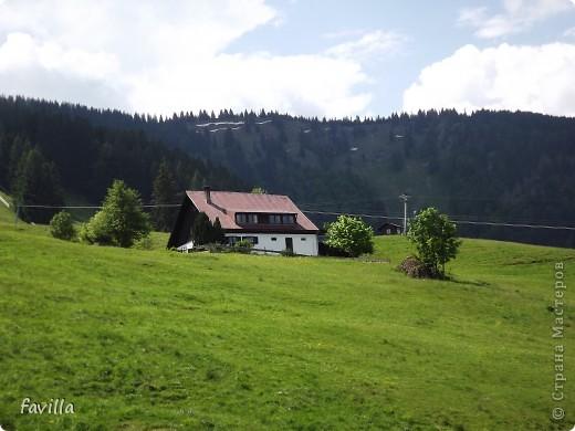 Alpsee Coaster самый длинный в Германии родельбан (горка для катания на санях) Длина 3 км, подъем в гору (на высоту около 1400 м) на подвесной дороге. При спуске - 68 поворотов, 23 волны, 7 прыжков, 4 моста, и 430-градусный спиральный поворот. Скорость развивается до 40 км в час Подъем в гору происходит на подвесной дороге.  Я фотографировала  маму и Вику со своего сиденья.  фото 14