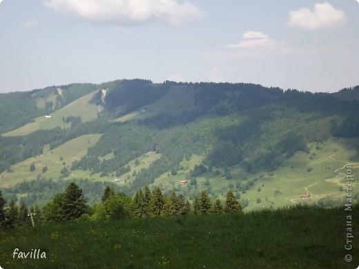 Alpsee Coaster самый длинный в Германии родельбан (горка для катания на санях) Длина 3 км, подъем в гору (на высоту около 1400 м) на подвесной дороге. При спуске - 68 поворотов, 23 волны, 7 прыжков, 4 моста, и 430-градусный спиральный поворот. Скорость развивается до 40 км в час Подъем в гору происходит на подвесной дороге.  Я фотографировала  маму и Вику со своего сиденья.  фото 18