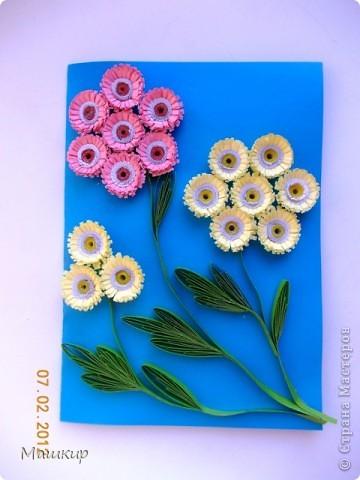 Просто цветочки